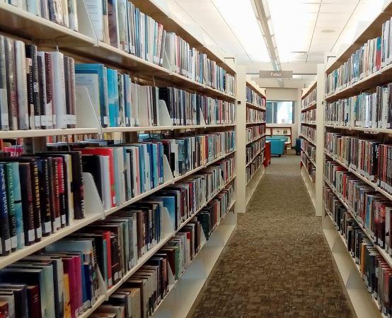 Biblioteka Chełm:                      Święto Longina Jana Okonia