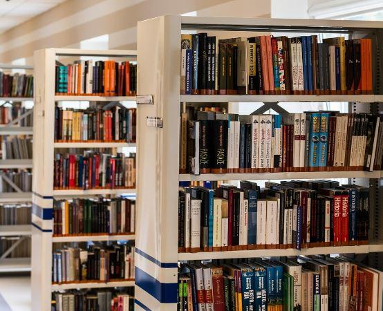 Biblioteka Chełm:                      Wakacje